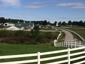 Pinewood Farms in Maine